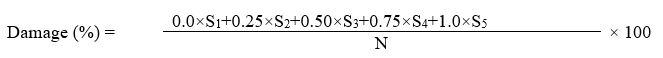 ijpsh1031_formula1